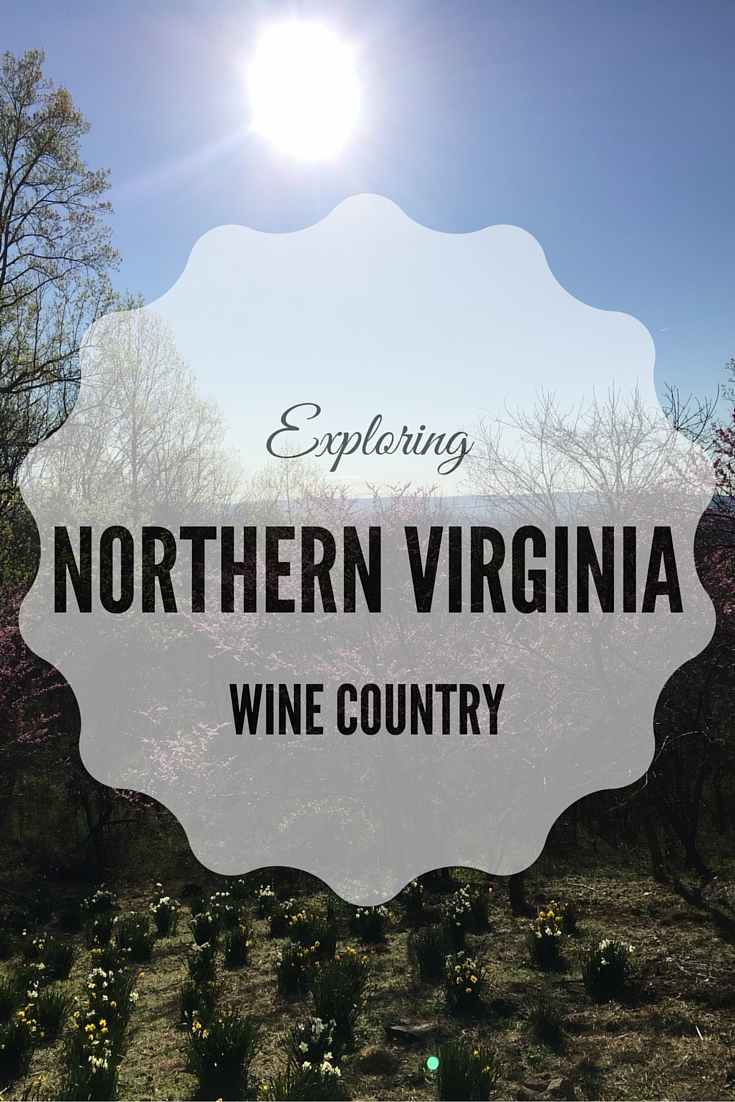 Part 1 of our ongoing series on Northern Virginia's wine country. Learn more about Stone Tower and Willowcroft Wineries!