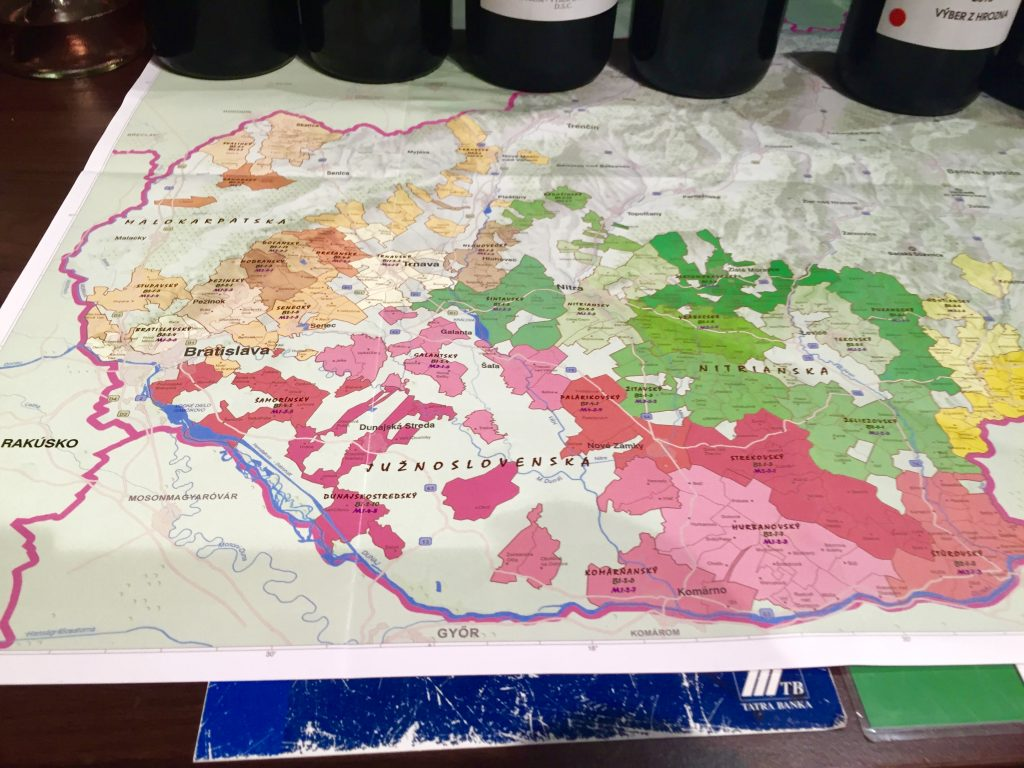 Tasting the Slovak National Collection of Wine