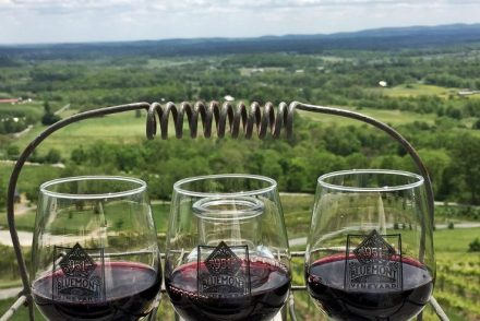 The view from the deck at Bluemont Vineyard