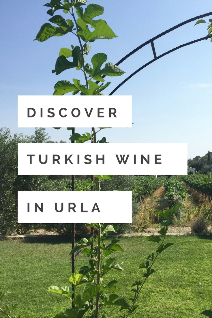 Did you know that Turkey has a wine region? With incredible wineries? Here is our guide to the incredible wineries of Turkey - a perfect trip for any wine lover!