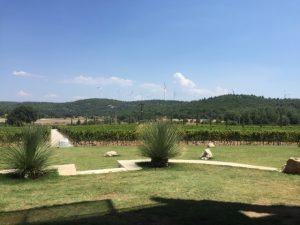 View from Urla Winery in Urla, Turkey