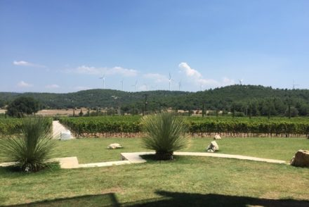 View from Urla Winery in Urla, Turkey
