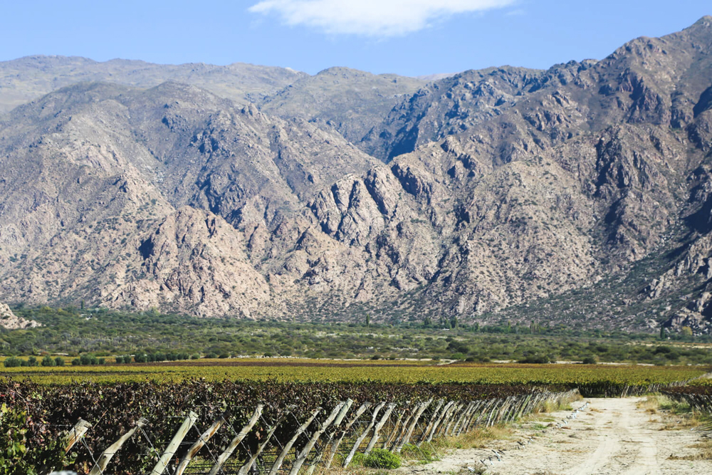 Cafayate Argentina - Wine Regions of the World