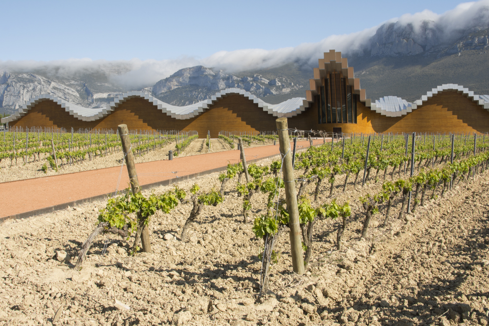 La Rioja Spain - Wine regions around the world