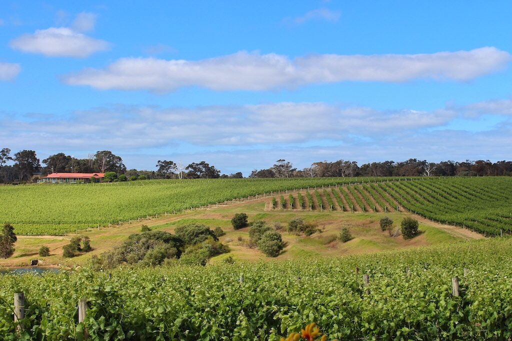 Margaret River, Western Australia - unique wine regions around the world