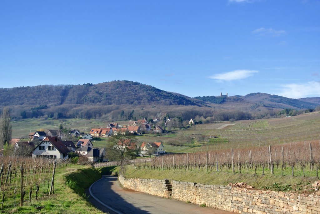 Alsace Wine Route road trip