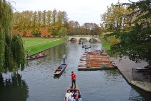 Punting in Cambridge - Day Trip from London - Cambridge, UK
