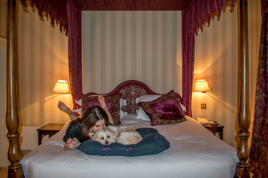 Grange Hotel, York; Dog-friendly Yorkshire; Travelling with a dog: Our first six months with Giorgio.