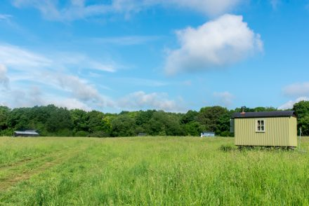 Wriggly Tin Shepherds Huts - Shepherds Hut Glamping - Glamping in Hampshire
